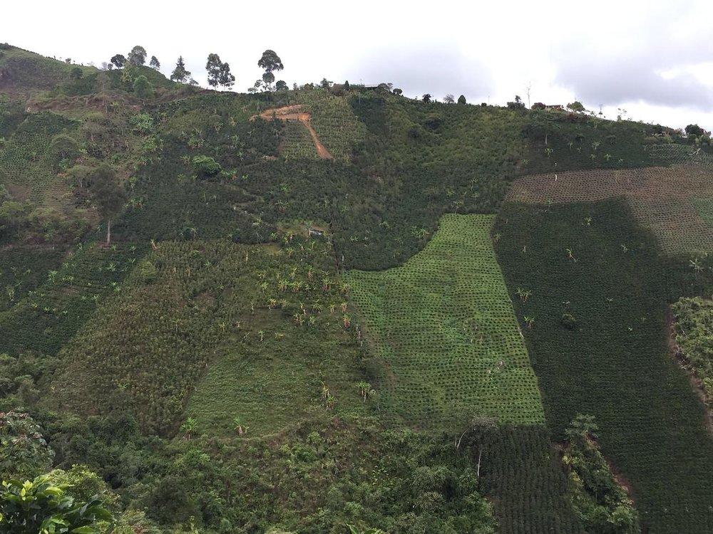 Colombia - Alvaro Urbano1.jpg