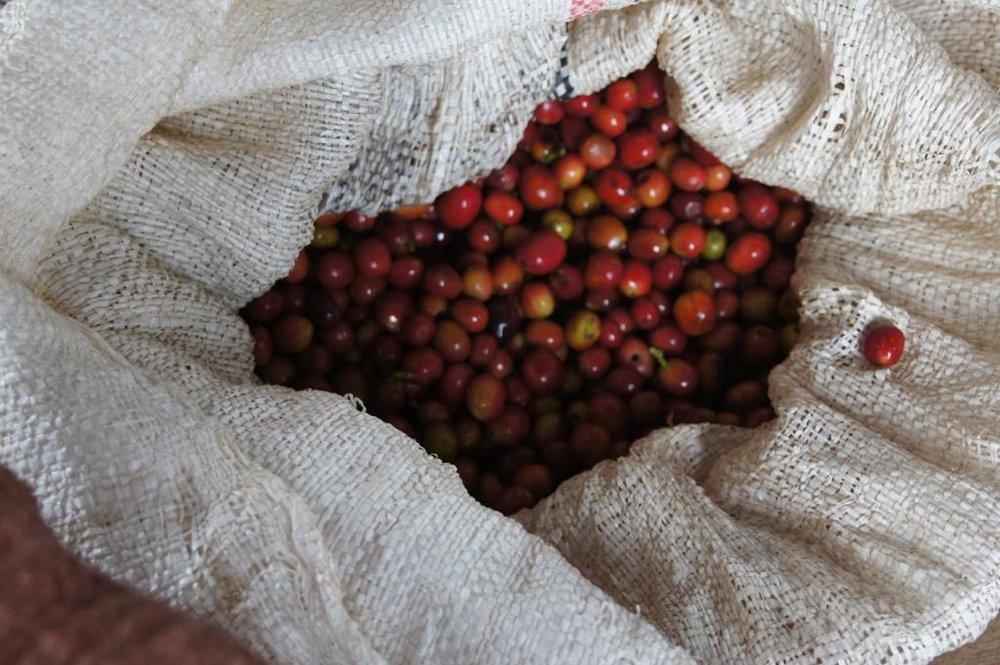 Etiopia - Magarrisa2.jpg