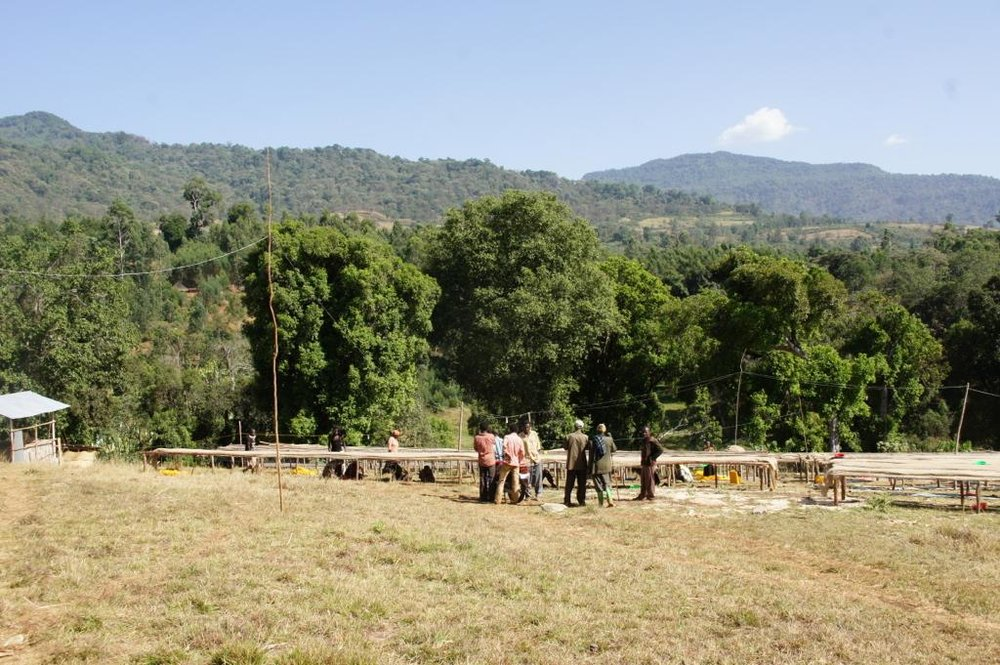 Etiopia - Magarrisa7.jpg