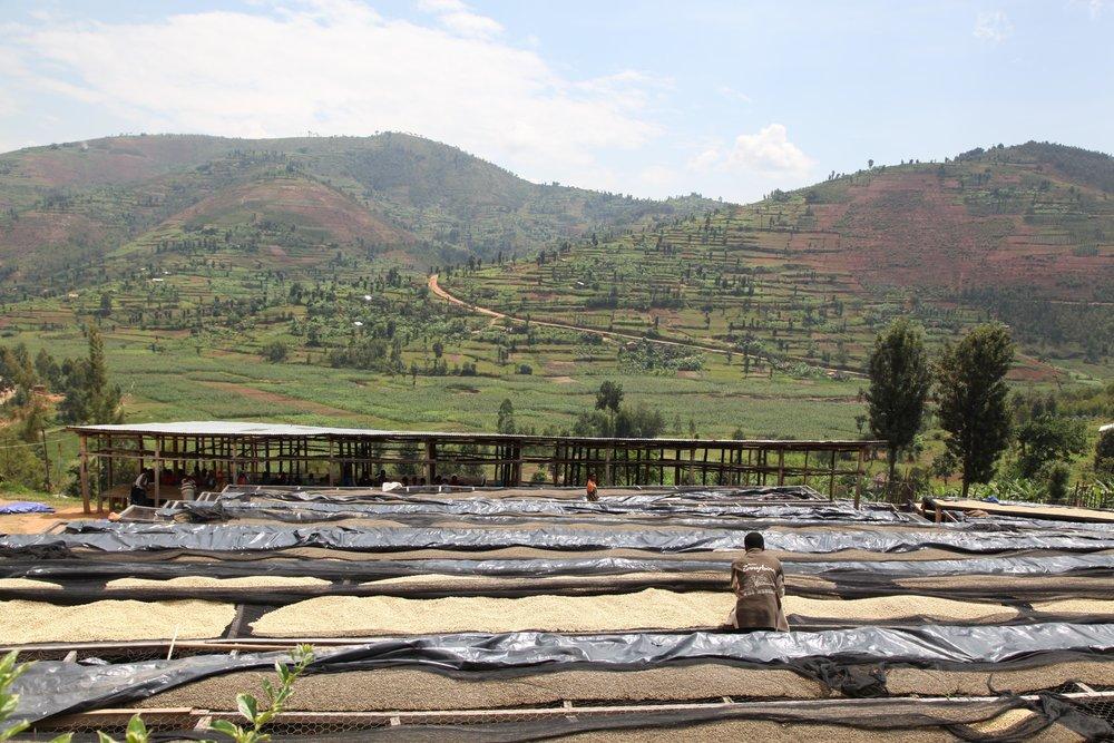 Rwanda - Kitantu Remera2.jpg