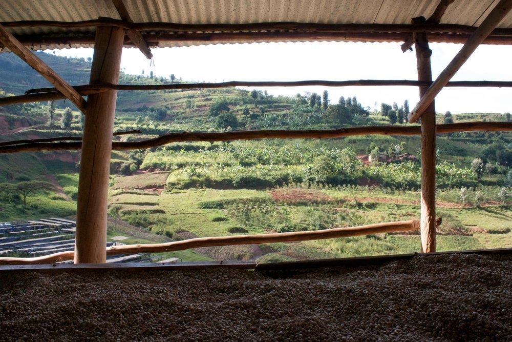 Rwanda - Kitantu Remera3.jpg