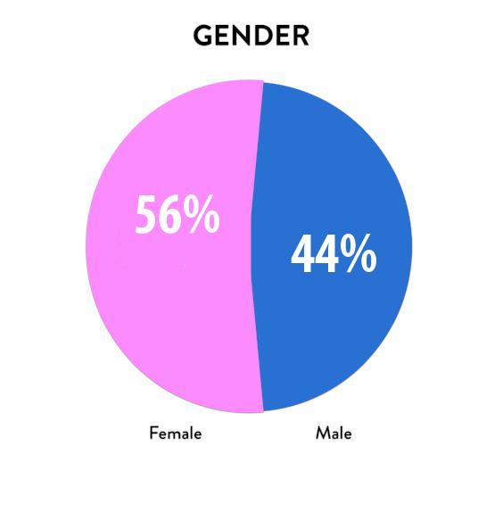 2017 Gender.jpg