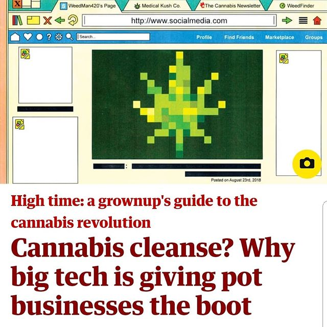Editor Alex Halperin's latest for @guardian cannabis vs @facebook and @google  #cannabiz #tech #legalizeit #420 #siliconvalley