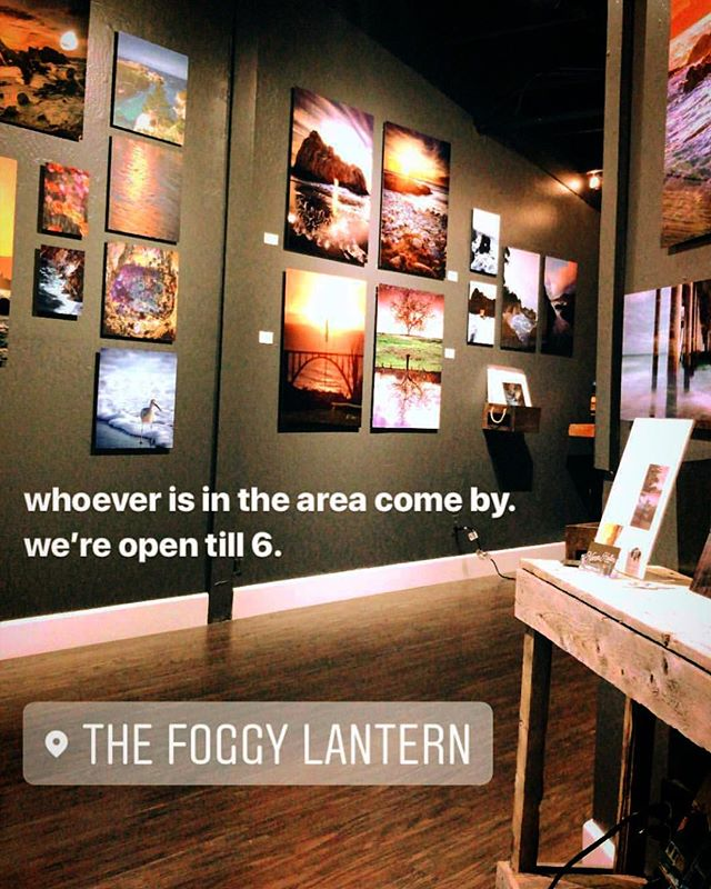 Come find the perfect local art for your wall! #thefoggylantern #coastalgallery #canneryrow #monterey #montereyonmetal #montereybay #artgallery
