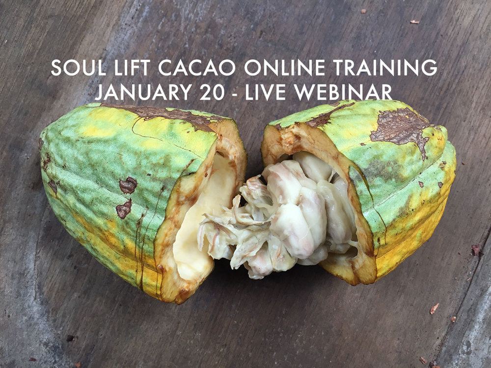 2019-1-20-cacao-training.jpg