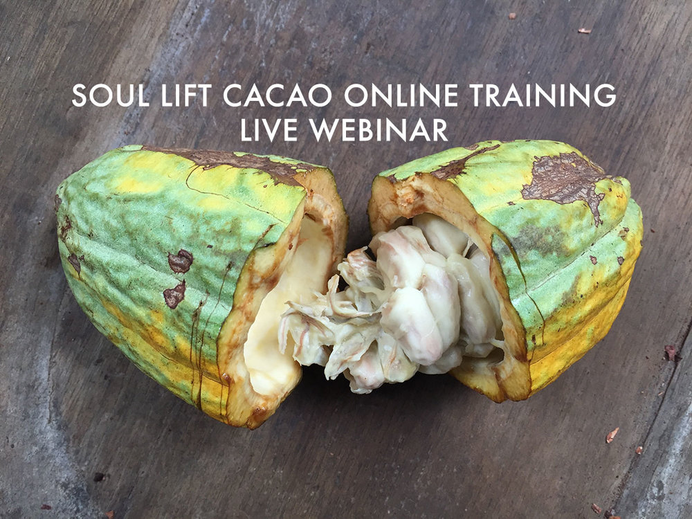 CLICK THE IMAGE TO LEARN ABOUT THE UPCOMING SOUL LIFT CACAO TOUR AROUND CALIFORNIA IN MAY 2018!