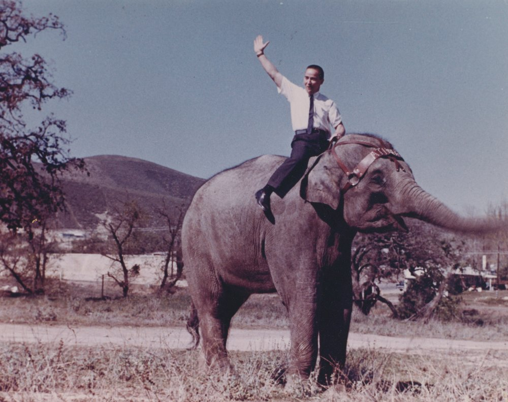 Meet Sonita the elephant, and my Dad, Tom Lyster  Tom represented several roof truss companies in the early 60's. He had Sonita show how strong roof trusses are.
