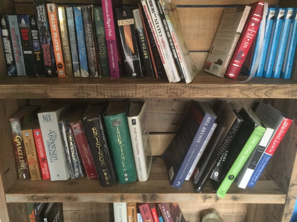 A photo of the author's bookshelf organized by genre, including several of his picks for 10 books that he thinks everyone should read. Photo by the author.