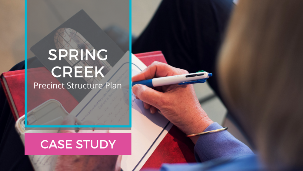 Case Study: Spring Creek Structure Plan Panel