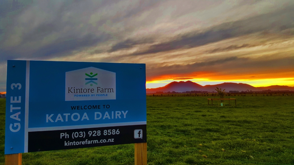 Katoa Dairy