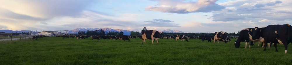 Kintore Farm