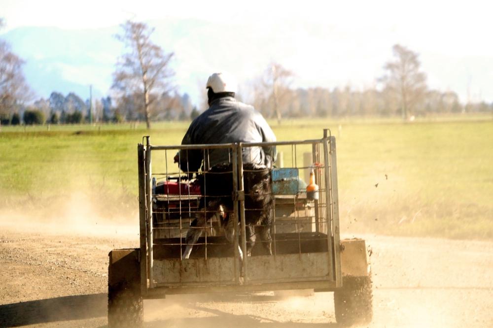 Kintore Farm - People