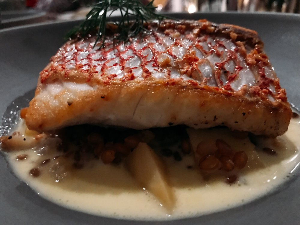 Red Snapper:   Wheat Berries, Fennel, Root Vegetables