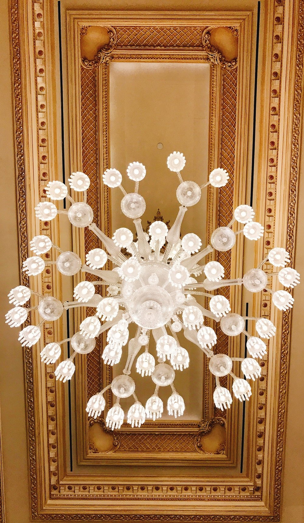 Ceiling and Lighting delights