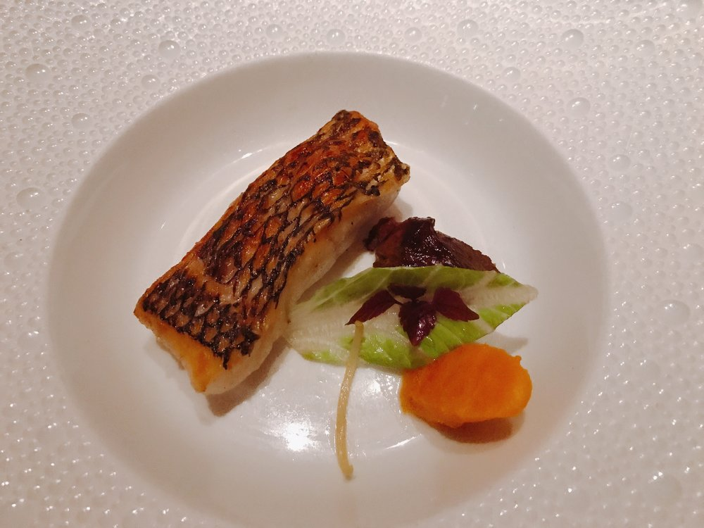 "Black Bass ""Surf and Turf"": Crispy Black Bass and Braised Veal Cheek, Parsnip Emulsion, Ginger-Five Spice Reduction"