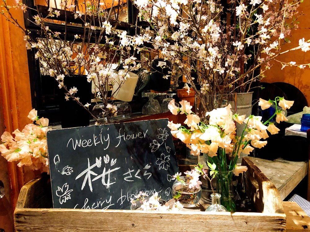 Highlighting The Weekly Flower: Sakura