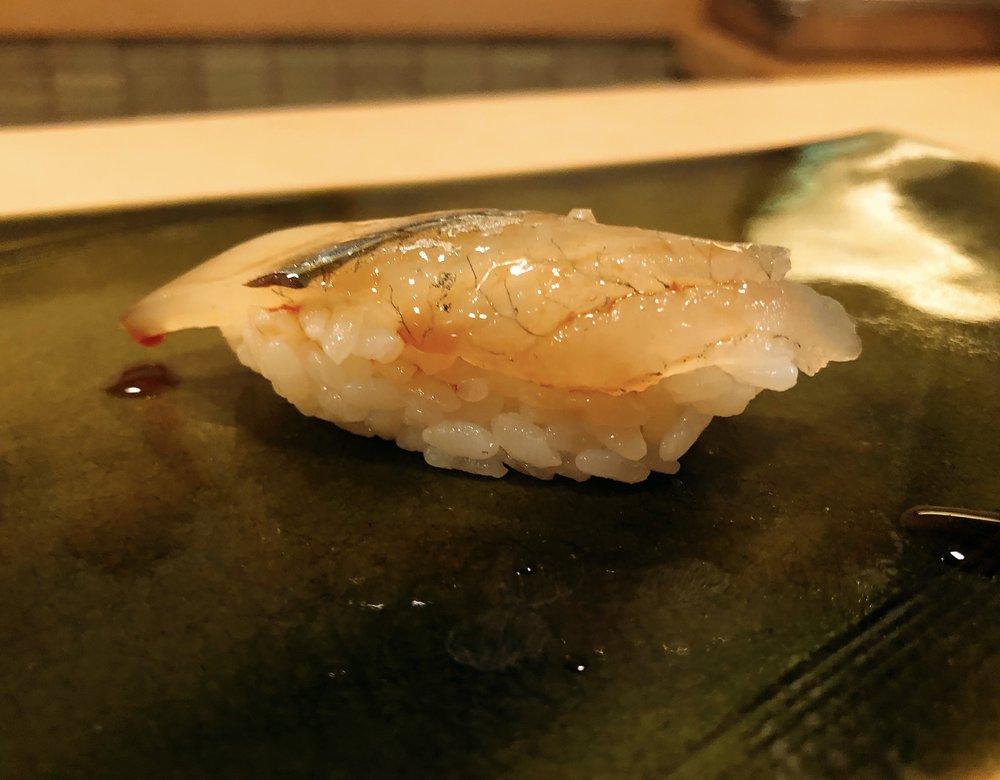 Shima-Aji (Striped Horse Mackerel)