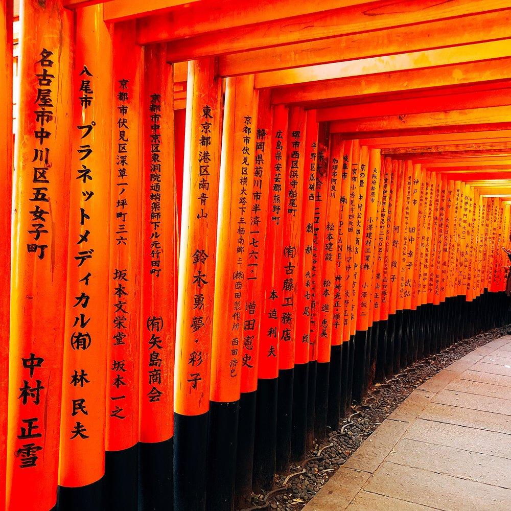 The Vermilion Gates At Fushimi Inari-taisha