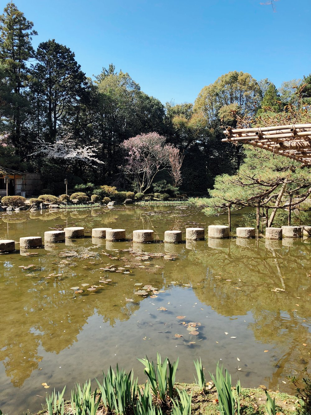 The Famous Stepping Stones Featured In Lost In Translation