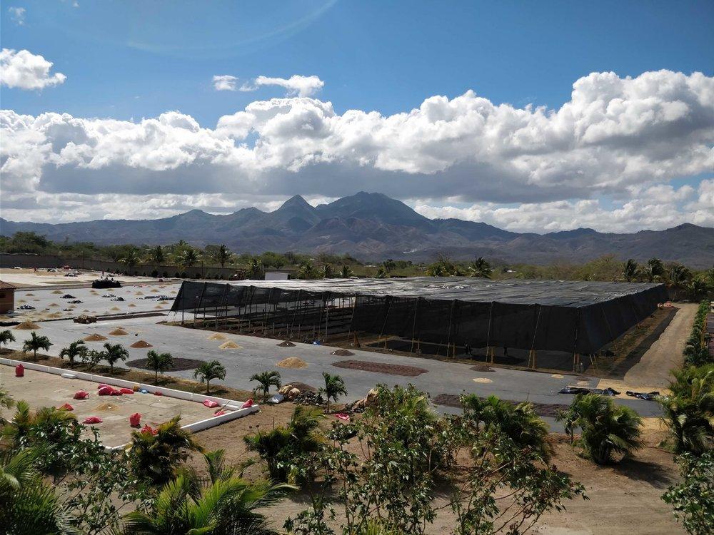 La Segovia—the incredibly ambitious drying station use for both of Luis' farms, La Benedicion and Un Regalo de Dios.