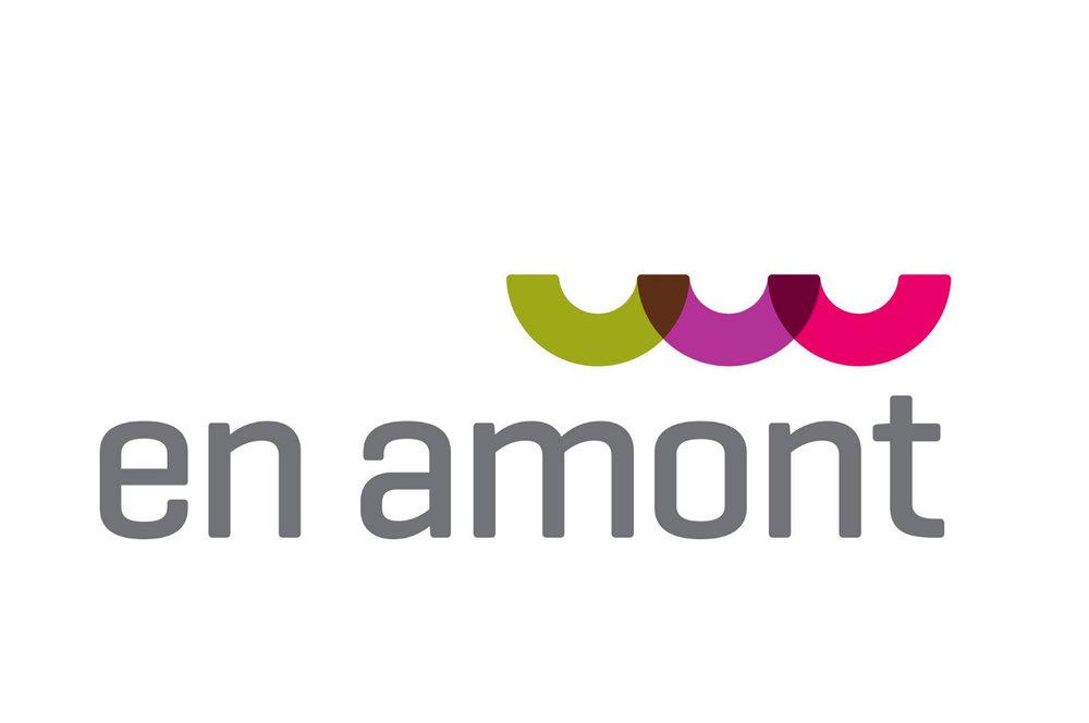 NO2_En amont.jpg