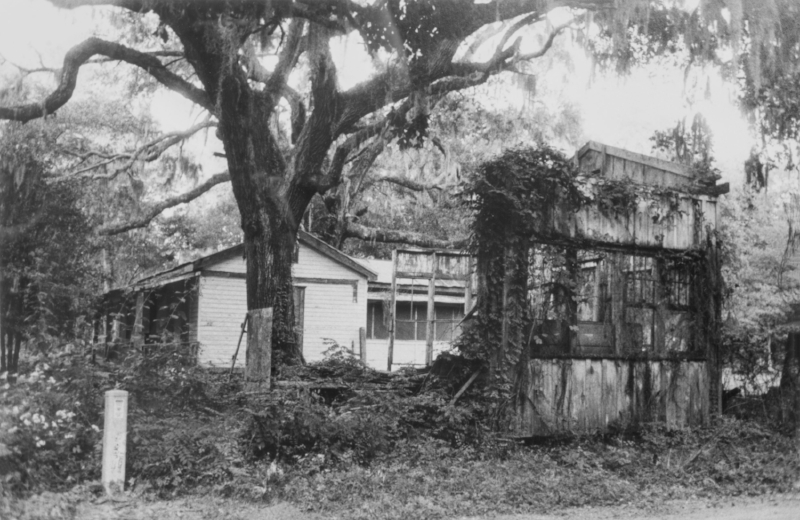 Jeanne Moutoussamy-Ashe,  An Old Fallen House Next to a Tree  ;  Image courtesy of the Columbia Museum of Art