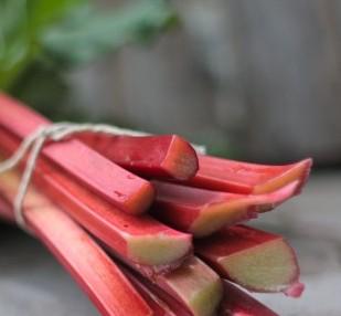rhubarb-header-e1473109137352.jpg