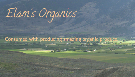 Meeting the Godfather of Organics