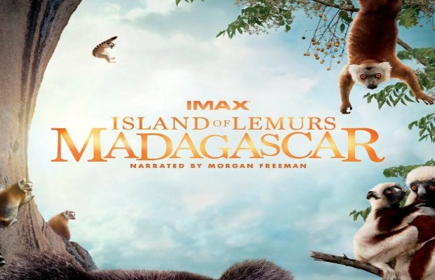 Imax Lemurs.jpg