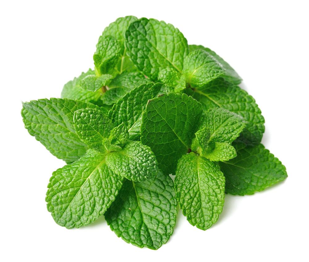 Savees-Mint-Leaves-50g.jpg