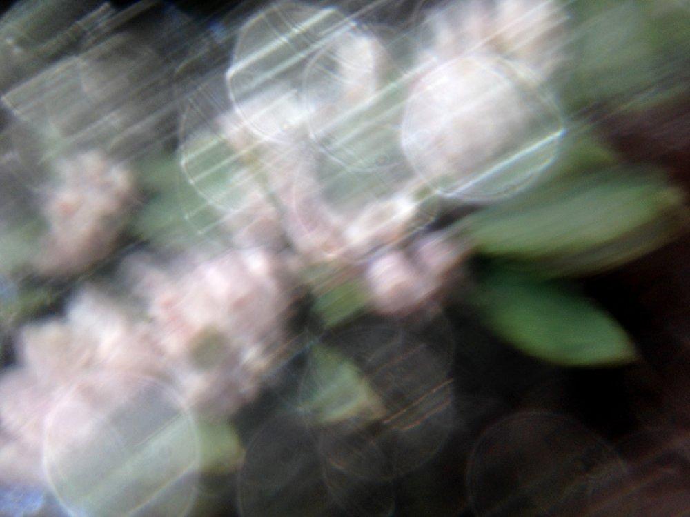 filter .jpg