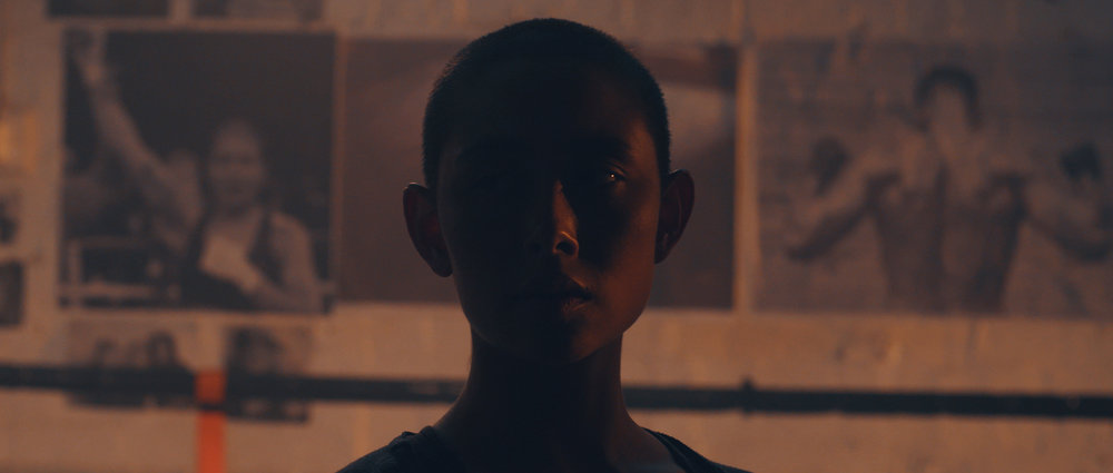 MUSIC VIDEO  SOPHIE KOH - THE TIGER NOT THE HARE