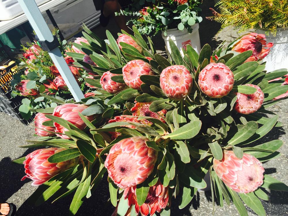 flowers market.png