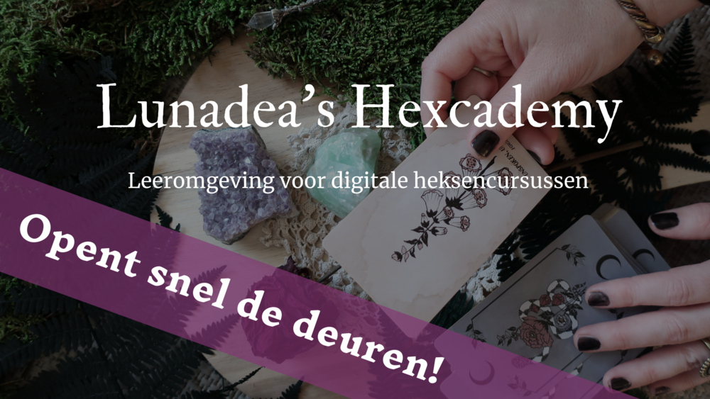 Hexcademy-soon.png