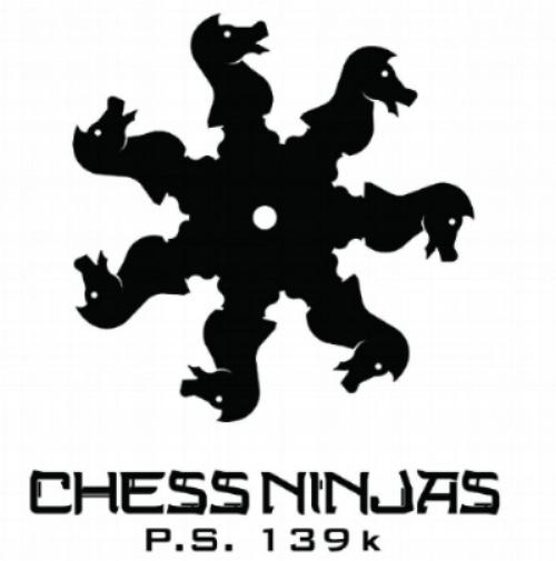 chessninjas.jpg