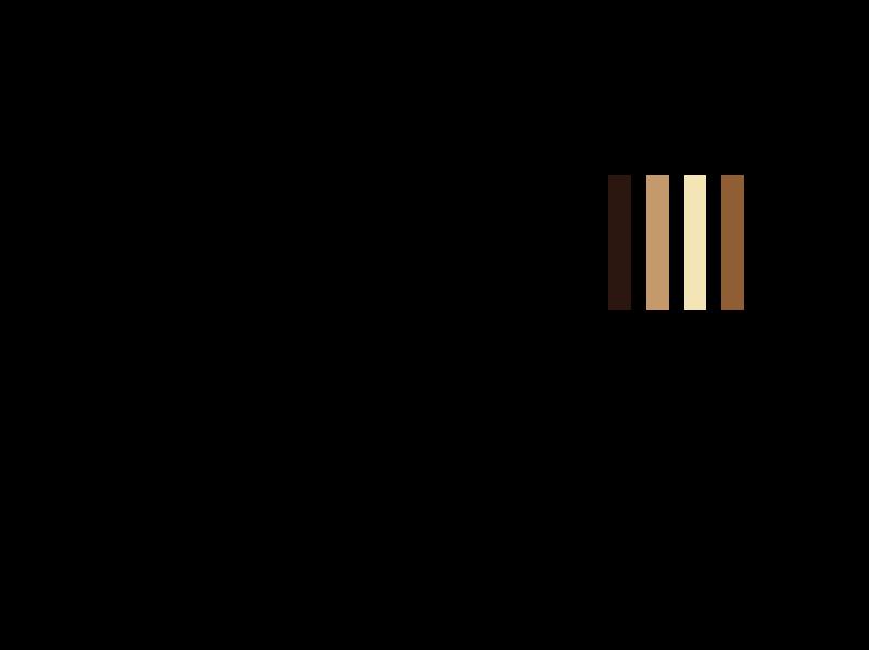 Kin City Logo & Branding