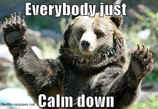 The bear just wants you to CHILL OUT