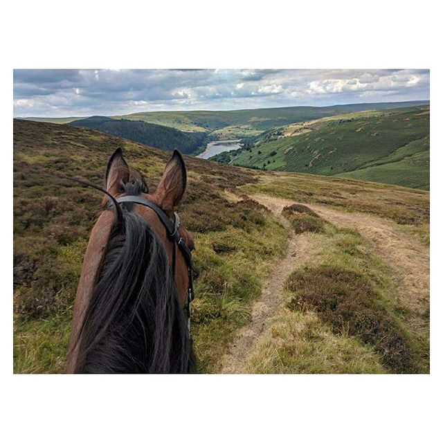 Happy Friday! The weekend is here, what are your plans? I will be out exploring on my trusty steed 🤠 . . Don't forget to tag #myperegrine we love seeing your photos 📷 . . . . . . . #equestrian #horseriding #britishbrand #heritage #trekking #wales #ceredigion #horses #crosscountry #sustainablefashion #equestrianfashion #hacking #explore #weekendwalks #countryside #britishweather #moorland #mountains #horsebackriding #equestrianlife #horsesofinstagram #countryclothing #countryattire #landscape #thoroughbred #horsetrekking #country #views