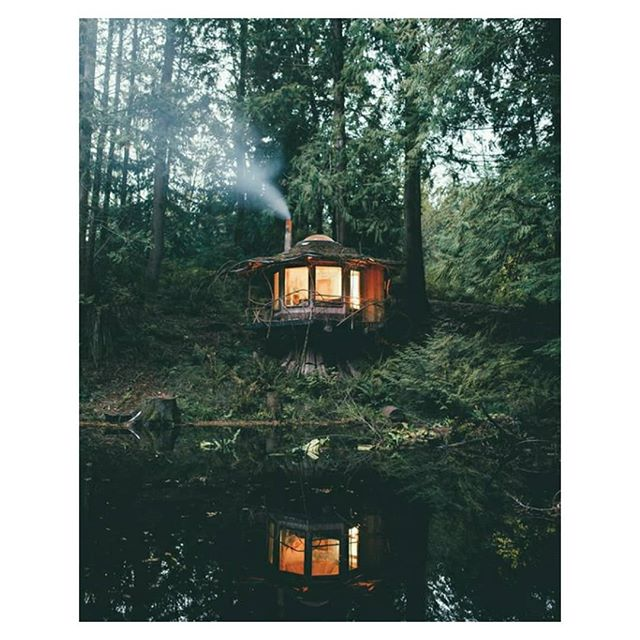 Cosy cabin in the woods 🌲🍃 Tag someone you would stay here with! 😍 . . Don't forget to tag us #myperegrine we love seeing how you style your Peregrine 📷 . . . . . #tinyhouse #cabininthewoods #escape #forest #tinyhousemovement #sustainableliving #cabinlife #architecture #thecabinchronicles #dreamhome #countrylife #cabinporn #cabinlove #offgrid #adventure #wanderlust #instacabin #wilderness #nature #outdoors #woodcabin