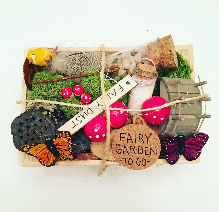 Fairy Garden To Go Kit