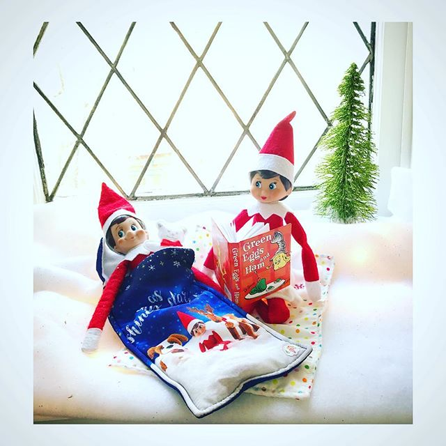 PUNKY & COCO have a sleepover ❄️ ❄️ ❄️ #tinygala #elfontheshelf #elfontheshelfideas #christmas @elfontheshelf  #michaelsmakers #madeitwithmichaels #drsuess #christmas