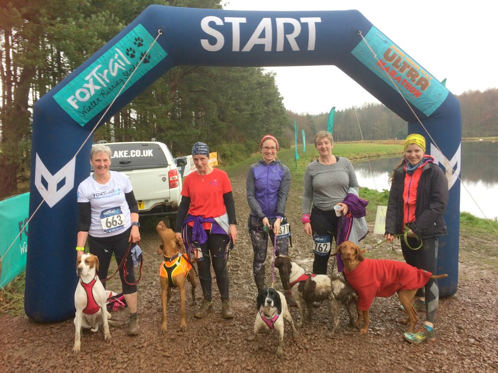 Some members of Cani-Sports Edinburgh; all smiles and waggy tails.