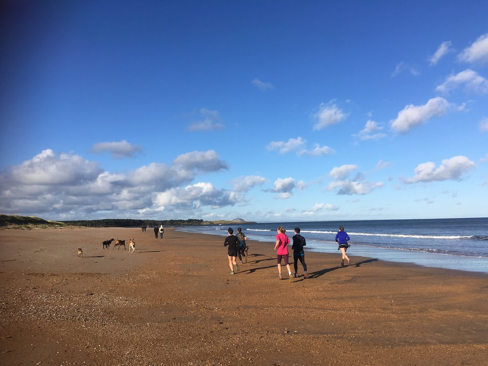 Post race warm down, along the beach with our hairy friends (dogs - not weirdly hairy people)