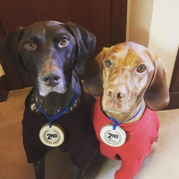 Zac and Jasper posing with my medals from the weekends 10k and Nocturnal Ultra