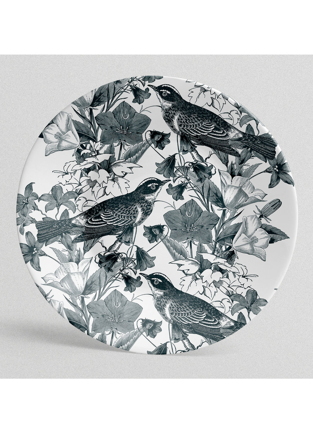 plate01.jpg