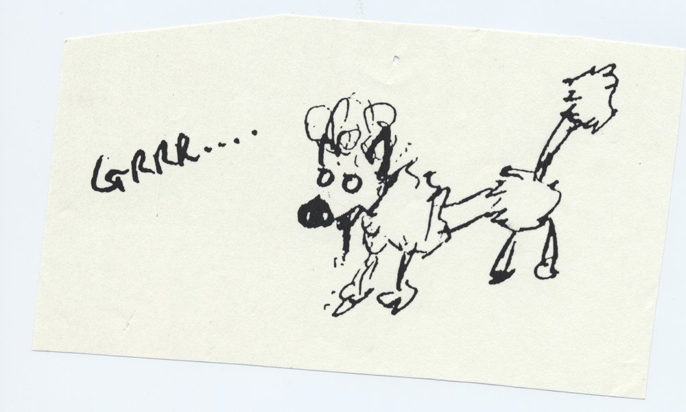 evil poodle