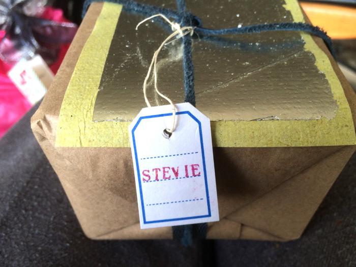 present for stevie_adj01-sm.jpg