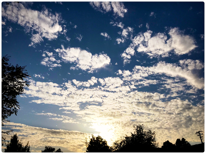 Sky, clouds, sun, trees_adj01-sm04b.jpg