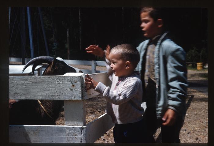 Mike-1962-Little Farm maybe-goat_adj01-sm.jpg