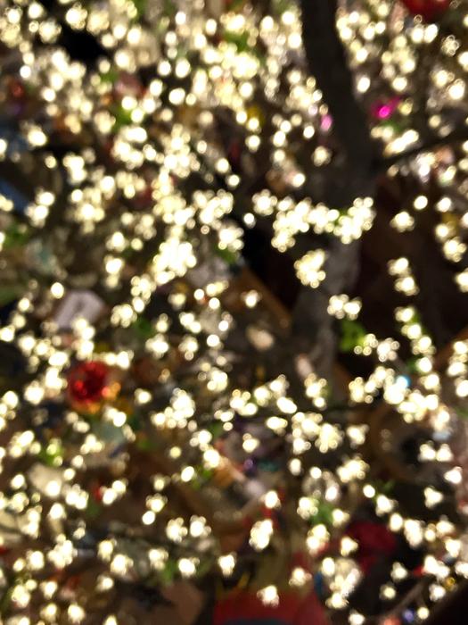 Christmas Lights-blurry-2018_adj01-sm.jpg
